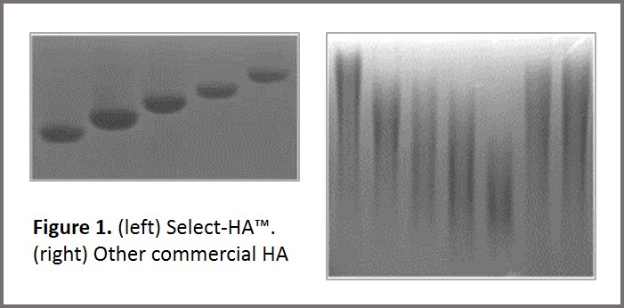 Hyalose, Select-HA Ladder, Hyaluronic Acid