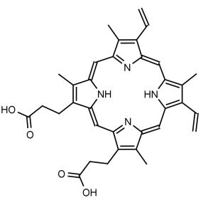 Protoporphyrin IX - Echelon Biosciences