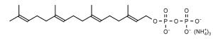 Geranylgeranyl Diphosphate (GGPP) - Echelon Biosciences