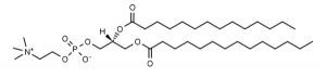 1,2-Dimyristoyl-sn-glycero-3-phosphocholine (DMPC) - Echelon Biosciences