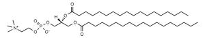 1,2-Distearoyl-sn-glycero-3-phosphocholine (DSPC) - Echelon Biosciences