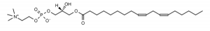 18:2 lysoPC - Echelon Biosciences