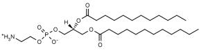 1,2-Dilauroyl-sn-glycero-3-phosphoethanolamine (DLPE) - Echelon Biosciences