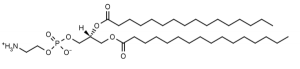 1,2-Dipalmitoyl-sn-glycero-3-phosphoethanolamine (DPPE) - Echelon Biosciences