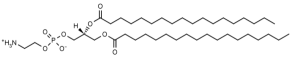 1,2-Distearoyl-sn-glycero-3-phosphoethanolamine (DSPE) - Echelon Biosciences