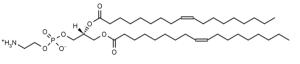 1,2-Dioleoyl-sn-glycero-3-phosphoethanolamine (DOPE) - Echelon Biosciences