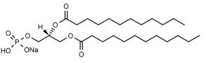 1,2-Dilauroyl-sn-glycero-3-phosphate, sodium salt (DLPA) - Echelon Biosciences