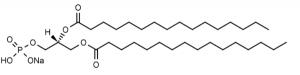 1,2-Dipalmitoyl-sn-glycero-3-phosphate, sodium salt (DPPA) - Echelon Biosciences