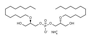 Ether C12 Lysobisphosphatidic acid ((R,R)-2,2'-Bisdodecyl-LBPA ammonium salt) - Echelon Biosciences