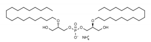 Ether C18 Lysobisphosphatidic acid ((S,S)-2,2'-Bisoctadecyl-LBPA ammonium salt) - Echelon Biosciences