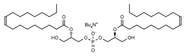 (S,S) Bisoleoyl-lysobisphosphatidic acid (LBPA) - Echelon Biosciences