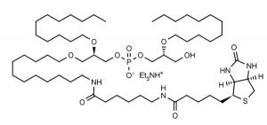 Biotin-(R,R)-2,2'-Bisdodecyl-LBPA (biotin-C12-ether LBPA) - Echelon Biosciences