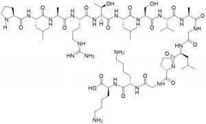 Syntide II