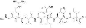 Sarilesin (Angiotensin II [Sar1,Ile8]), CAS 37827-06-8 - Echelon Biosciences