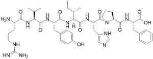 Angiotensin III, human / Angiotensin II-[Des Asp1], CAS 13602-53-4 - Echelon Biosciences