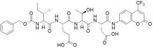 Z-Ile-Glu-Thr-Asp-AFC (Granzyme B Substrate) - Echelon Biosciences