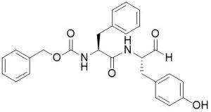 Z-Phe-Tyr-CHO (Cathepsin L Inhibitor) - Echelon Biosciences