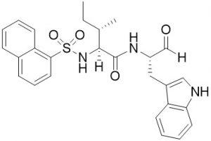 Cathepsin L inhibitor - Echelon Biposciences Inc.