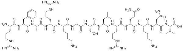 [Ser25] Protein Kinase C Substrate (19-31) - Echelon Biosciences