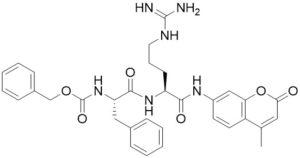 Z-Phe-Arg-AMC (Kallikrein substrate) - Echelon Biosciences