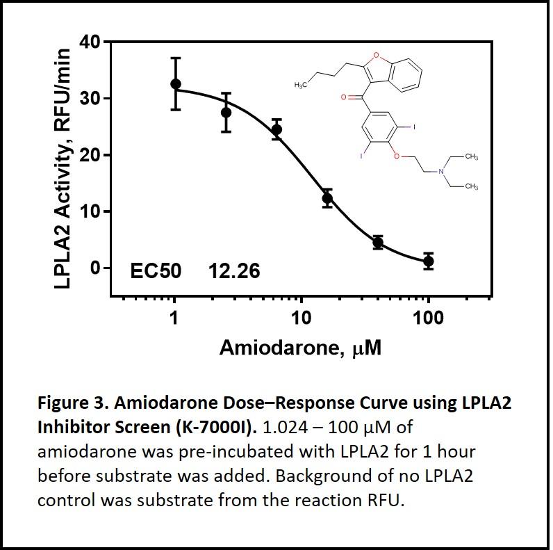 cationic amphiphilic drugs, CAD, amiodarone, LPLA2, lysosomal phospholipidase A2