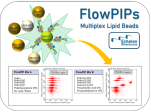 Echelon Biosciences - Flow PIPs: Multiplex Lipid Beads