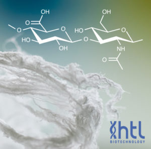 Sodium Hyaluronate - Echelon Biosciences